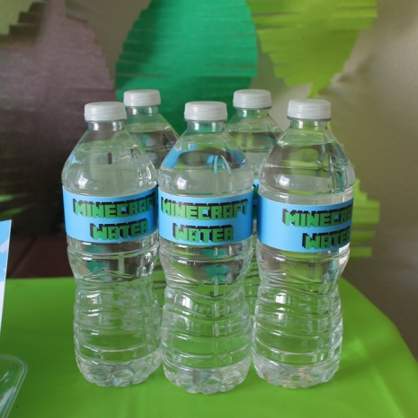 minecraft, party, water, bottle, labels