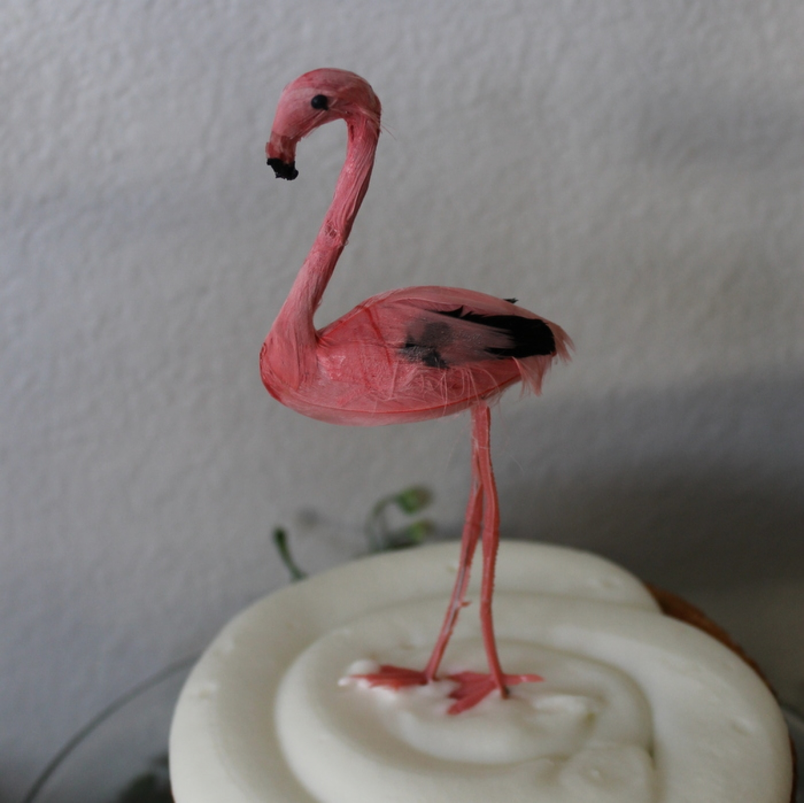 Flamingo Party Package Frolic And Frills